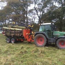 IMG_3330 Woodland Management
